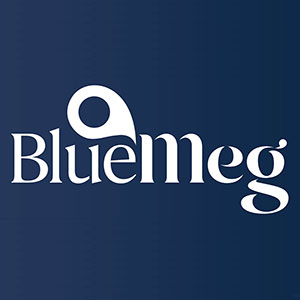 BlueMeg - Corporate Services Review