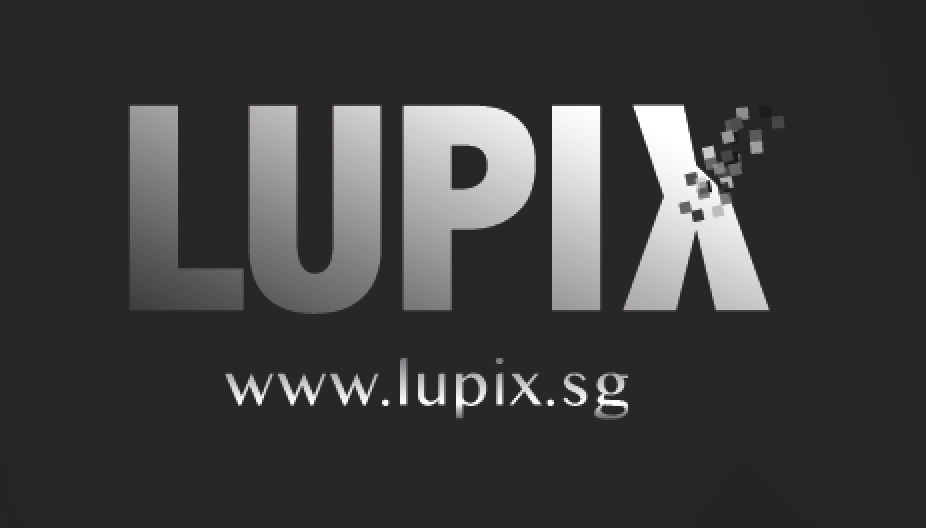 LuPiX - Corporate Services Review