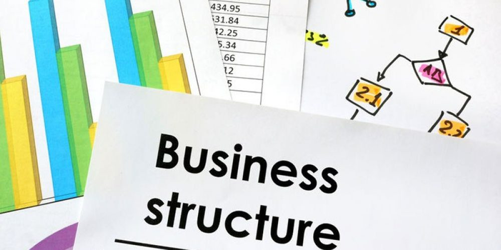 1.4.4 Business Structure Comparison