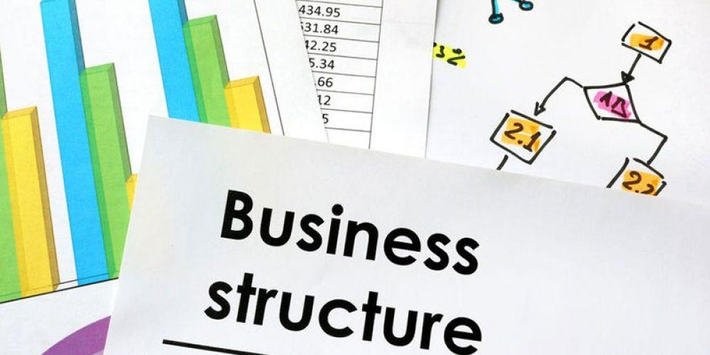 1.4.4 Business Structure Comparison