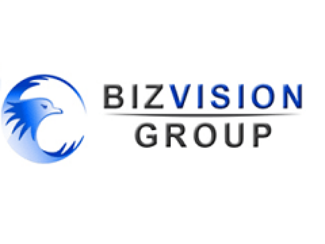 Biz Vision – Corporate Services Review