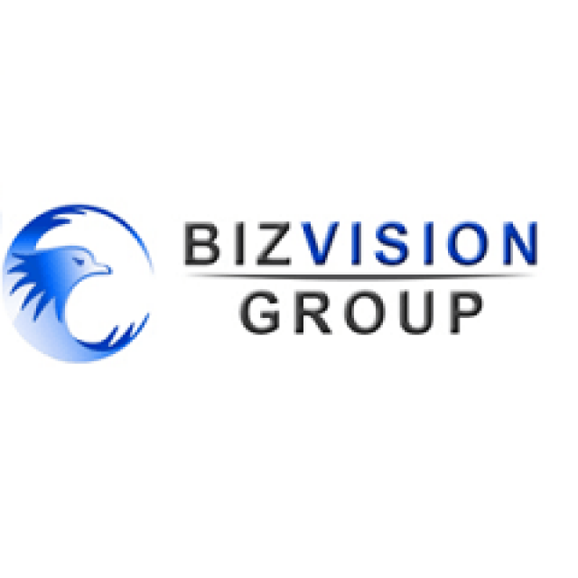 Biz Vision – accounting services