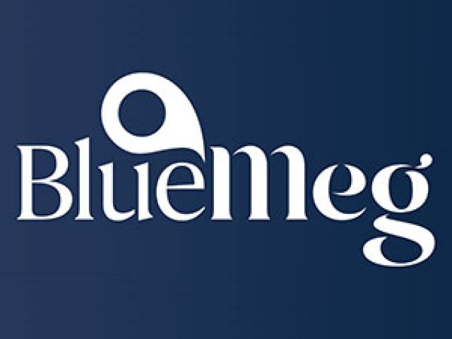 BlueMeg – Corporate Services Review