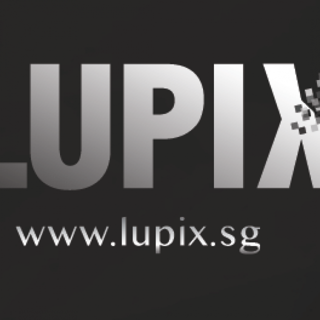 LuPiX – Corporate Services Review