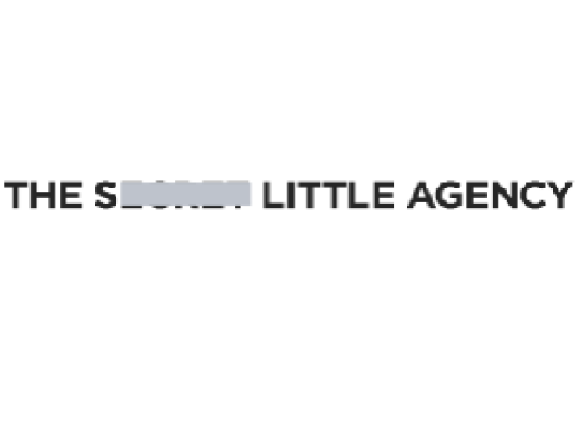 The Secret Little Agency – Marketing Strategy