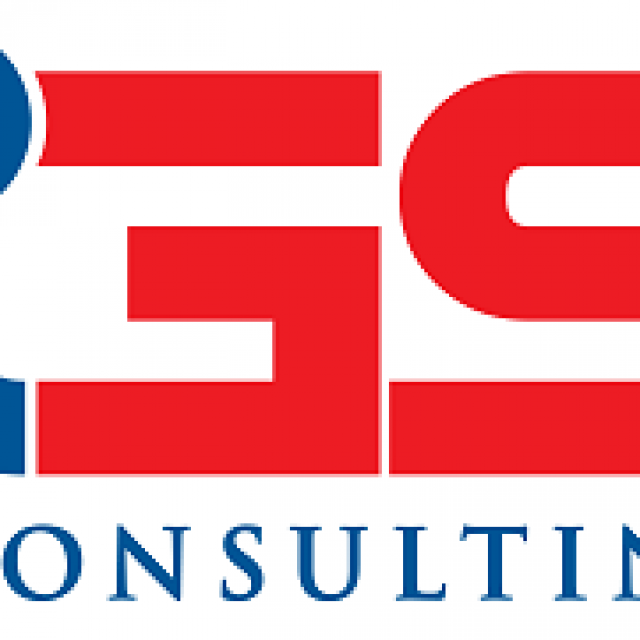 IGS Consulting – Corporate Services Review