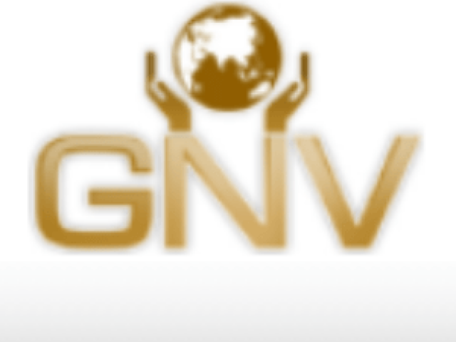 GNV Consultancy – Corporate Services Review