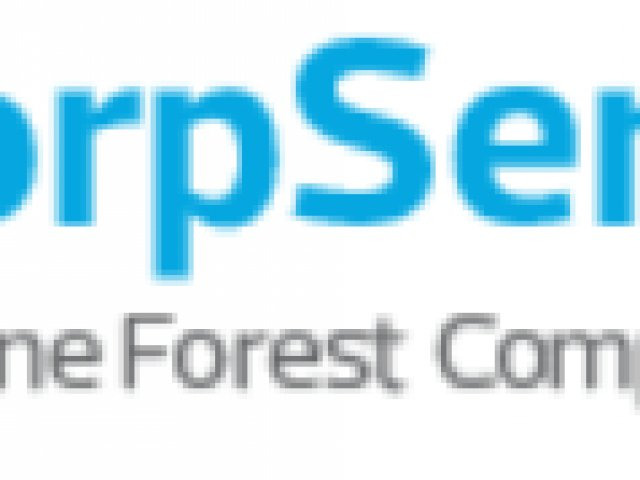 CorpServe – Corporate Services Review
